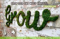 DumpADay Garden Hacks- Moss graffiti