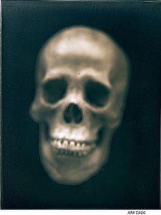 Adam Fuss  UNTITLED, 2002  Daguerreotype  14 x 11 inches  35.6 x 27.9 centimeters