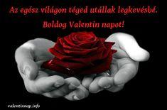 Miért kell nekünk a Valentin-nap? Wiccan Spells Love, Free Love Spells, Powerful Love Spells, Latin Spells, Crazy Love, Love Is Free, White Magic Love Spells, Loreena Mckennitt, Rose Flower Wallpaper