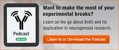 Spend your experimental break wisely and get some science on the go in less than 15 minutes. Research, Science, Learning, Search, Studying, Teaching, Science Inquiry, Onderwijs