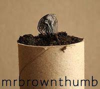 TP Tube Seed Pots