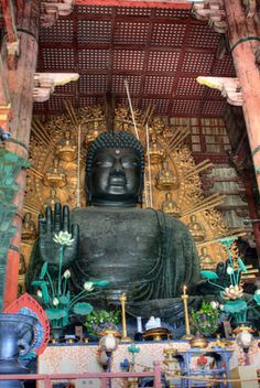 The former world's largest wooden building containing a giant Buddha, healing pillars, and tame deer which wander the grounds