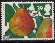 GREAT BRITAIN - 1993 Fruits and Leaves 39p, SG1783 - Used