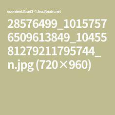 28576499_10157576509613849_1045581279211795744_n.jpg (720×960)