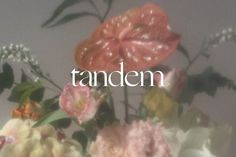 Tandem is a full service creative studio based in Utah. Graphic Design Brochure, Graphic Design Typography, Graphic Design Illustration, Website Design Layout, Layout Design, Typography Inspiration, Logo Design Inspiration, Brand Identity Design, Branding Design