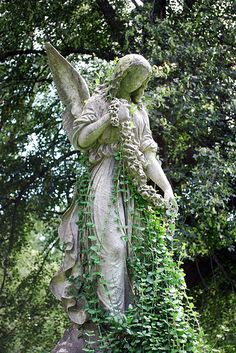 ivy covered | An angel becoming one with her surroundings at… | Flickr