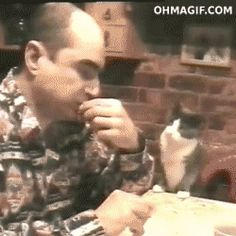 Please, sir, may I have some? - CLICK ON IMAGE TWICE TO VIEW GIF.