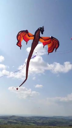 I just fell in love with this kite. Need one so badly