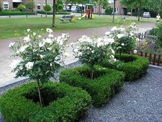 Easy Garden Design Fix up your lawn (and amp up your curb appeal) with these easy front and backyard landscaping improvements. Garden Design, Garden Landscape Design, Boxwood Garden, White Gardens, Front Yard Garden Design, Outdoor Gardens, Dream Garden, Rock Garden Landscaping, Landscape