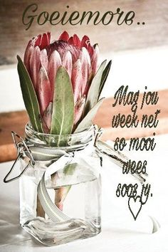 Good Morning Kisses, Good Morning Good Night, Good Morning Quotes, Happy Birthday Meme, Birthday Greetings, Daily Thoughts, Positive Thoughts, Family Qoutes, Lekker Dag