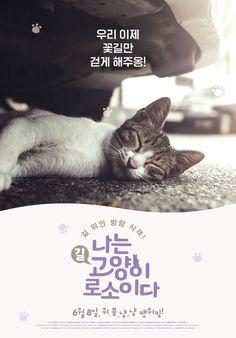 나는 고양이로소이다 _ I am a Cat - - P Y G M A L I O N -