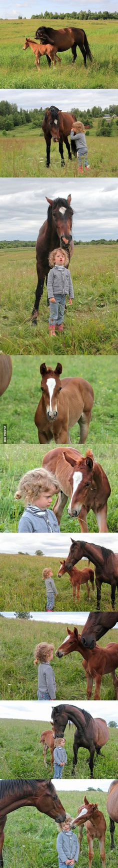 Little girl asks mare to be friends