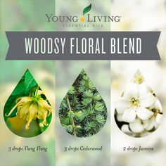 Woodsy Floral Blend: 3 drops Ylang Ylang essential oil, 3 drops Cedarwood essential oil, 2 drops Jasmine essential oil ~ Click for more blends.