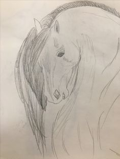 A drawing that I did of a horse
