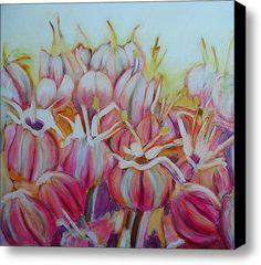 Allium Flower Stretched Canvas Print / Canvas Art By Sandrine Pelissier