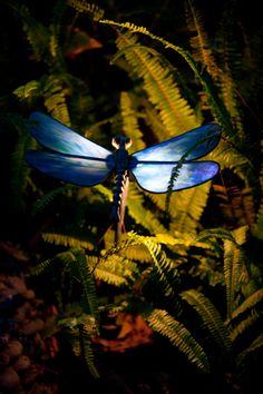 Dragonfly | Stone Manor Lighting
