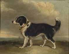 British 19th century oil painting of a black and white spaniel. Sold for $1,645 (Sale 2310, Lot 320)