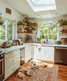 Modern Bohemian Kitchen Designs - Bohemian Home Living Room Earthy Kitchen, Cozy Kitchen, Kitchen Modern, Kitchen Ideas, Cottage Kitchen Inspiration, Kitchen Jars, Kitchen Cabinets, Backyard Kitchen, Japanese Kitchen
