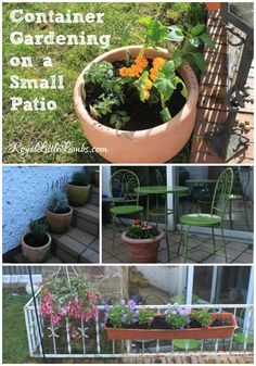 Container Gardening on a Small Patio - Here's how we make the best use of gardening space in our small yard and patio. | http://www.royallittlelambs.com/