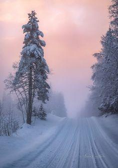 https://www.facebook.com/Asko.Kuittinen.kuvat/ - Discovering Finland (@DiscoverFinland) | Twitter