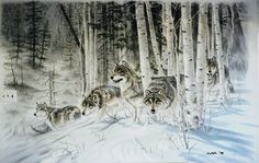 Wolves Wallpaper Border Murals And Borders Pinterest