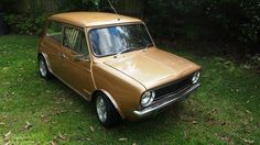 Leyland Mini LS (1978) nugget Gold. Located NSW for sale with a buy it now on Ebay April 2013 asking 7K buy it now. Needs some work..