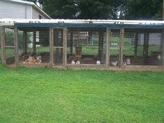 Poultry chicken breeding pen pallets