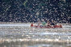 Long-tailed (& short-lived) mayflies rush to mate and reproduce before they die in a few hours. The Tisza River in Hungary is thick with these insects during the blooming season in late spring and early summer.