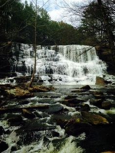 [Alabama] Welti Falls by by Michelle Dunn Shedd via 10 Beautiful Alabama Waterfalls