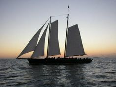Key West Sunset Sail aboard Schooner America 2.0