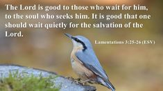 Wait On the LORD - http://blog.peacebewithu.com/wait-on-the-lord/