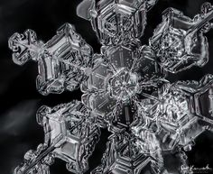 Macro Snowflakes ~ Atmospheric Noise-- This is an extreme close up photo of a snowflake's beauty, and it reminds me of crystallized lace. It is really so sad to think that they all melt away at some point. Snowflake Photography, Macro Photography, Fine Art Photography, Winter Photography, Snowflake Pictures, Crystal Snowflakes, Real Snowflakes, Ice Crystals, Snow And Ice
