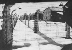 Vista de parte da cerca de arame farpado e de barracões de prisioneiros em Auschwitz, na época da liberação daquele campo. Auschwitz, Polônia, janeiro de 1945.
