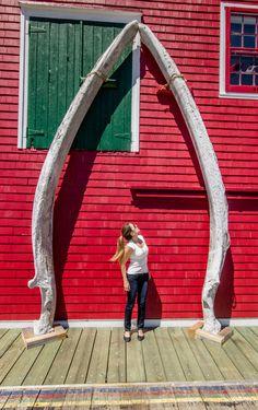 Nova Scotia's South Shore: Historic Lunenburg and charming Mahone Bay Ottawa Canada, O Canada, Canada Trip, Montreal Canada, Alberta Canada, East Coast Travel, East Coast Road Trip, Lunenburg Nova Scotia, East Coast Canada