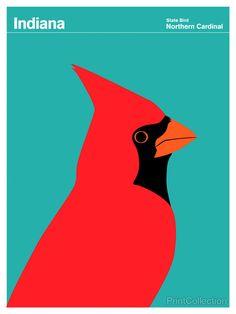 Indiana Northern Cardinal