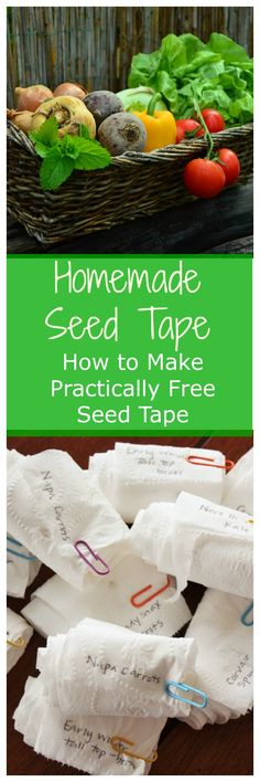 Seed tape is the best and most efficient way to get a perfectly spaced garden this year. No more planting tiny seeds and then thinning them later! Allotment Gardening, Gardening Tips, Allotment Ideas, Container Gardening, Garden Seeds, Planting Seeds, Seed Tape, Home Vegetable Garden, Vegetables Garden