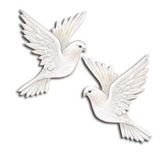 Image result for images of doves