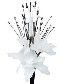White #artificial #flowers - #nylon gossamer flower arrangement in vase with gras,  View more on the LINK: http://www.zeppy.io/product/gb/2/321095624940/