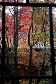 京都 禅林寺/永観堂 Zenrin-ji/Eikan-do, Kyoto