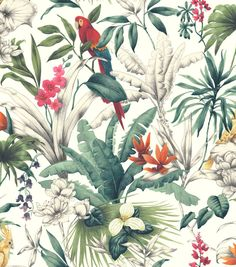 Birds of Paradise wallpaper from Accessorize. This fabulous floral design features exotic and colourful birds, tropical leaves and brightly coloured flowers on a cream background. It's paste the wall, making it quick and easy to hang with less mess. Paradise Wallpaper, Tropical Wallpaper, Bird Wallpaper, Paper Wallpaper, Colorful Wallpaper, Wallpaper Roll, Iphone Wallpaper, Botanical Wallpaper, Wallpaper Designs