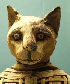"""""""В какой бы дом кошка умерла от естественной смерти, все те, кто живет в этом доме брить только брови"""", пишет Геродот в своих историях после посещения Египта в пятом веке до нашей эры. """"Но те, в которых умерла собака бритья все тело, а также их головой."""""""