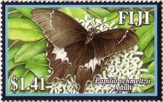Flora - Fauna on stamps: Papilio Schmeltzii Swallowtail - Fiji Fiji Culture, Flora And Fauna, Insects, Wildlife, Butterfly, Stamps, History, Flower Stamp, Animals
