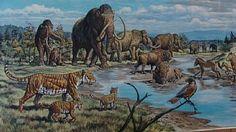 Ice Age Sino-Russian Fauna (detail)  (2009)   Subject: Ice Age fauna, landscape  Mark Hallett