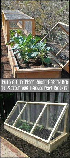 Protect Your Produce from Rodents by Building This City-Proof Raised Garden Bed #raisedgardenbeds