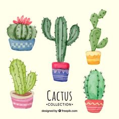 Lovely pack of watercolor cactus Free Vector Succulents Drawing, Cactus Drawing, Cactus Painting, Watercolor Cactus, Watercolor Design, Fabric Painting, Small Cactus, Green Cactus, Cactus Plants