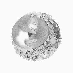 Illustration by Denise Nestor. #art #illustration #animal