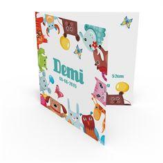 Geboortekaartje Demi