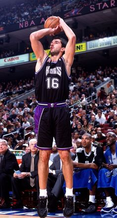 Also when I was growing up, Sacramento had an amazing basketball team and this man could shoot from way beyond the arc. I miss the good ol' days of this team! Basketball Tips, Basketball Leagues, Basketball Legends, College Basketball, Basketball Players, Sports Teams, Larry Bird, Small Forward, Sacramento Kings