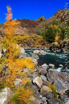 Fall Colors in the Rio Grande Gorge