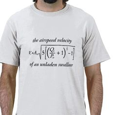The Airspeed Velocity of an Unladen Swallow Tee Shirts from http://www.zazzle.com/monty+python+gifts